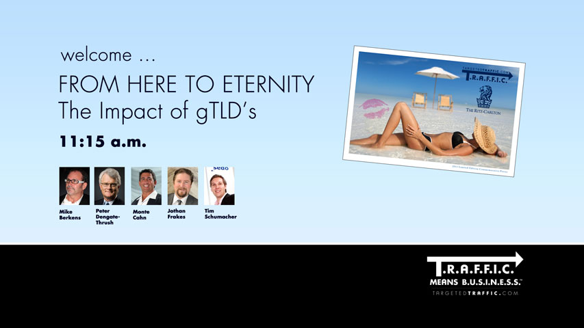From Here To Eternity: The Impact of gTLD's